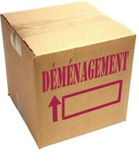 Fermeture de ce blog carton_dem